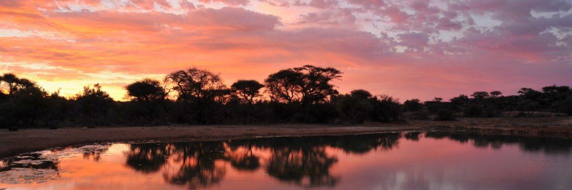 The Savanna Lodge – South Africa